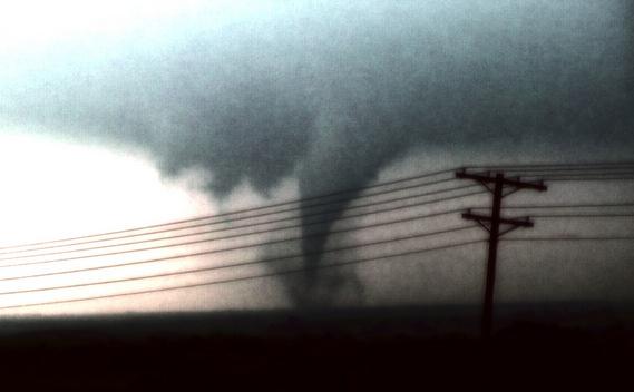 Tornado survival