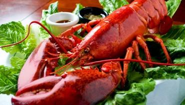 Lobster-Dinner-by-Dennis-Ramos-Flickr
